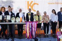 I Krajowa Wystawa Psów Rasowych pod patronatem i o Puchar Burmistrza Opoczna Dariusza Kosno - 15.09.2019 r.