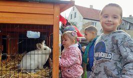 """""""Światowy Dzień Zwierząt"""" w Stanowicach"""