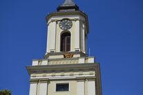 Maskotka Sowa na wieży