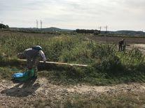Dwie osoby zbierające śmieci na polach