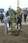 Na zdjęciu widać Burmistrza Miasta Świebodzice Pawła Ozgę i Prezydena Miasta Wałbrzycha  Romana Szełemeja, razem sadzą symboliczne drzewko.
