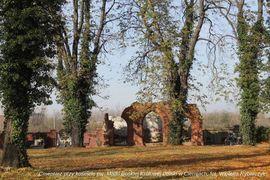 Cmentarz przy kościele pw. Matki Boskiej Królowej Polski w Cierniach