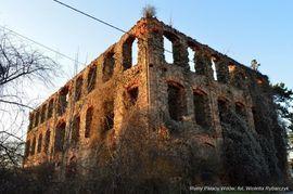 Ruiny Pałacu Wdów