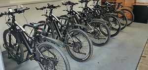 Rowery elektryczne cieszą się dużym powodzeniem.