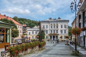Nieruchomość gruntowa zabudowana budynkiem gospodarczym przy ulicy Adama Mickiewicza w Jedlinie-Zdroju.