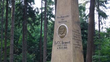 Zabytki - pomnik K. Beinerta