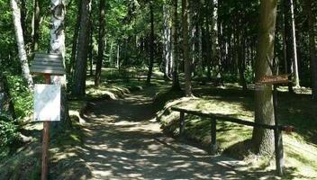 Park Północny - Aleja Brzozowa