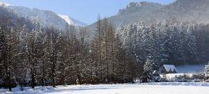 Zimowisko w Zakopanem
