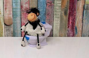 Pozycja w toalecie, czyli wstydliwie pomijany problem