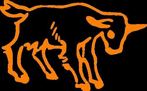 Chiński Horoskop 2017 - Koza