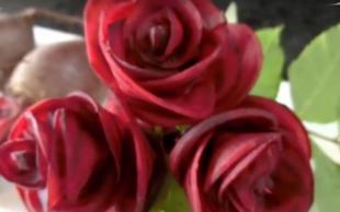 Buraczkowe róże