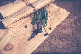 Dziewięć magicznych roślinnych rytuałów, które przyciągają szczęście i dobrobyt