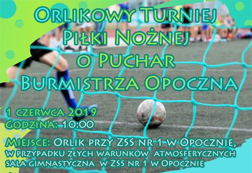 Orlikowy Turniej Piłki Nożnej o puchar Burmistrza Opoczna