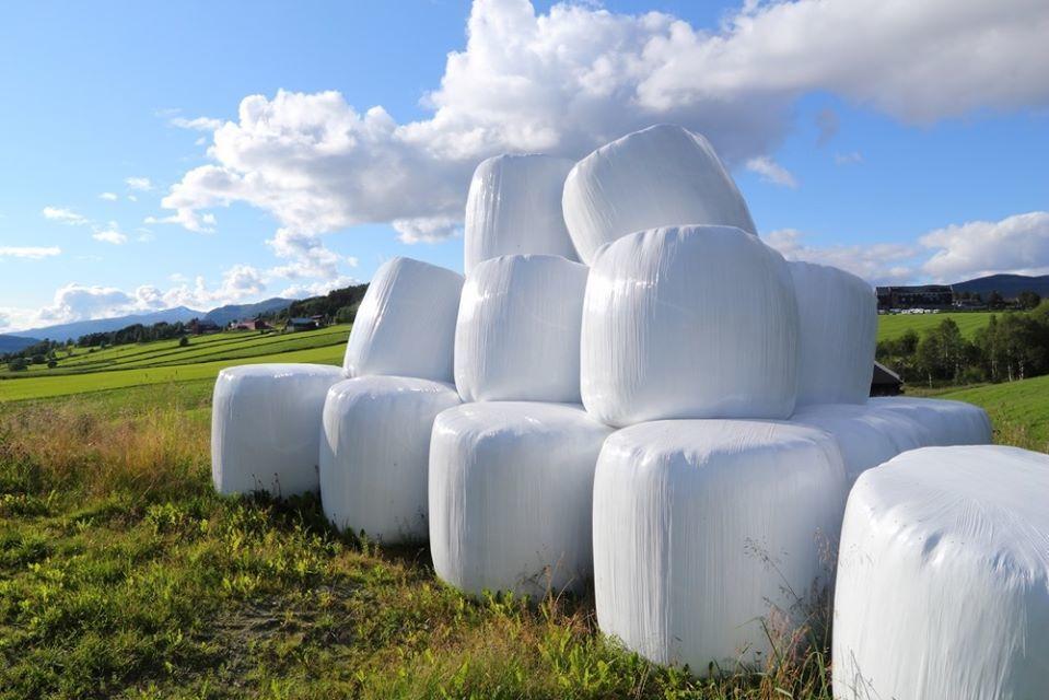 Odbiór folii rolniczych, siatki i sznurka do owijania balotów, opakowań po nawozach i typu Big Bag od rolników z gminy Opoczno