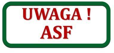 Kolejne przypadki wystąpienia ASFu