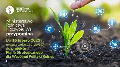 Konsultacje społeczne ws. projektu Planu Strategicznego dla Wspólnej Polityki Rolnej