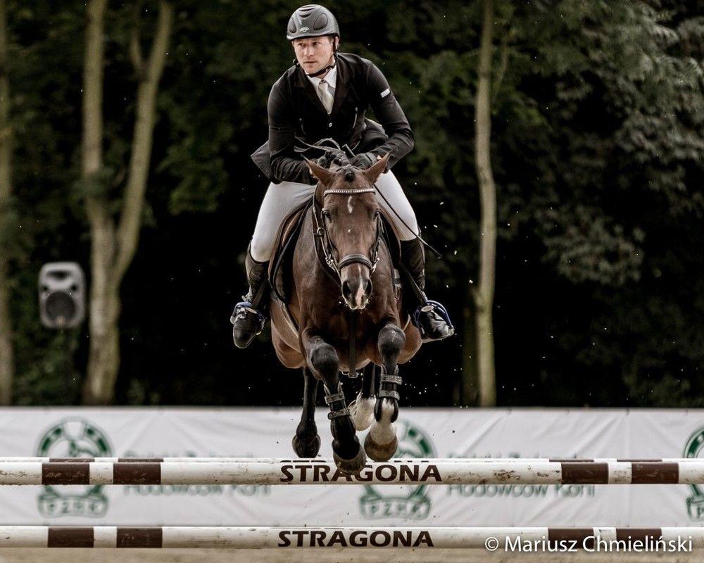 Mistrzostwa Polski Młodych Koni startują w Strzegomiu