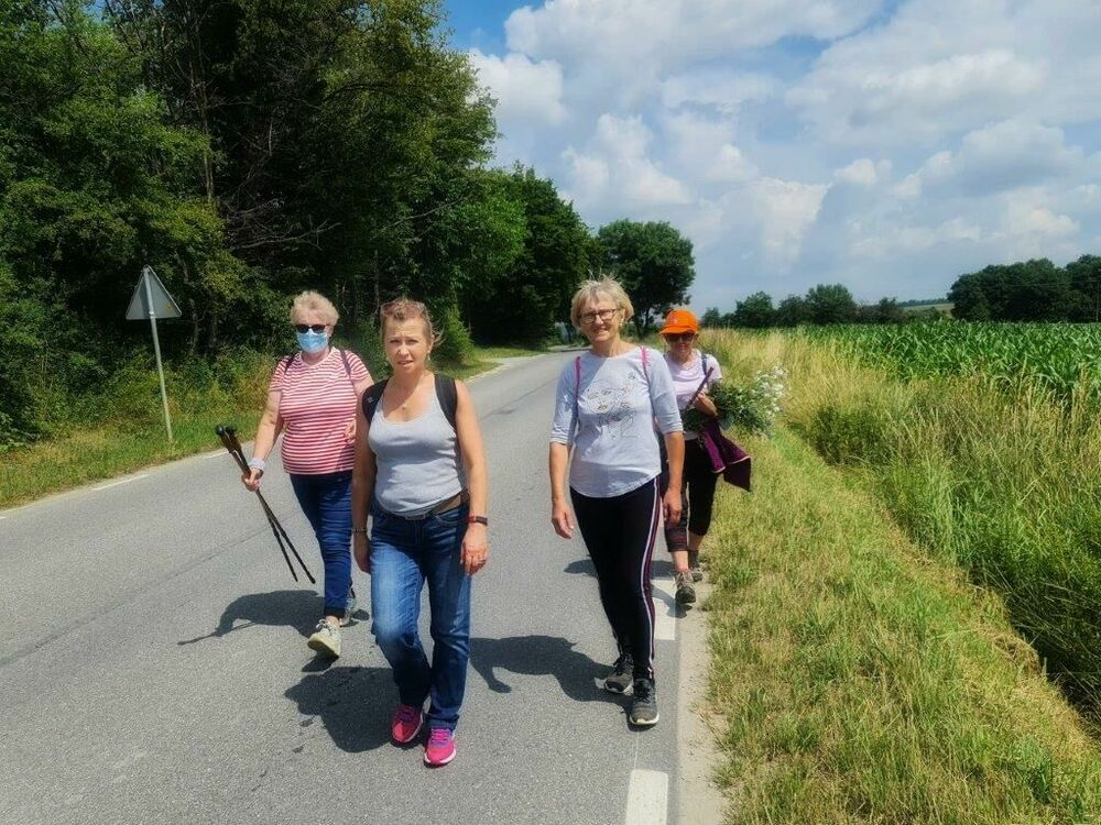 Poznaj gminę Strzegom, czyli piesze wycieczki po okolicy