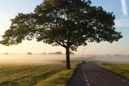 Wykaz jednostek odpowiedzialnych za utrzymanie dróg w Świebodzicach