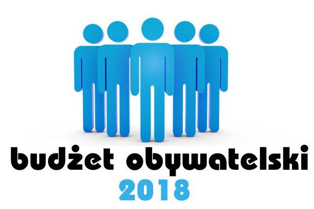 Grafika niebieskie ludziki i napis Budżet obywatelski 2018