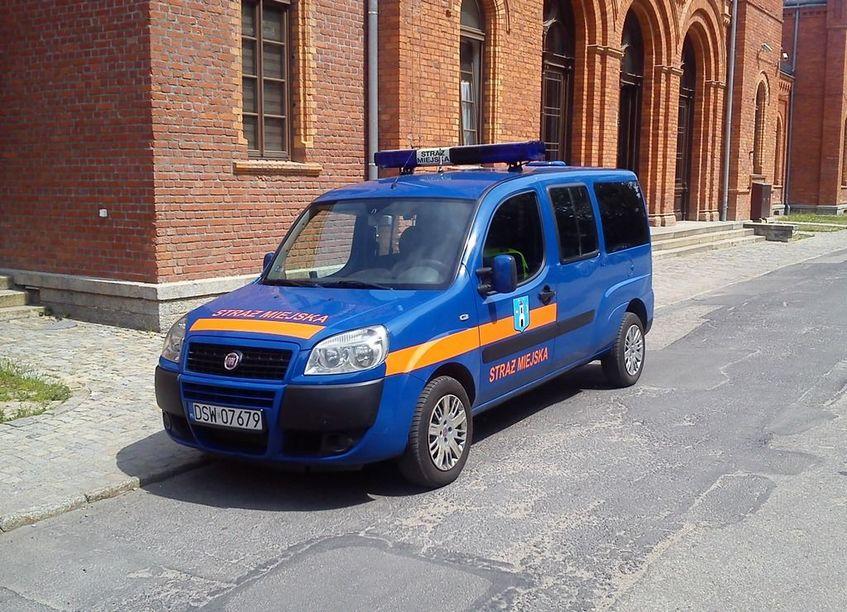 Bieżące działania Straży Miejskiej