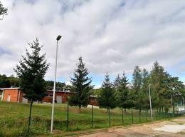 Zdjęcie przedstawia lampę oświetleniową na białym, wysokim slupie. W tle widać parterowy budynek w kolorze brązowym, stojący za ogrodzeniem, pośród drzew.