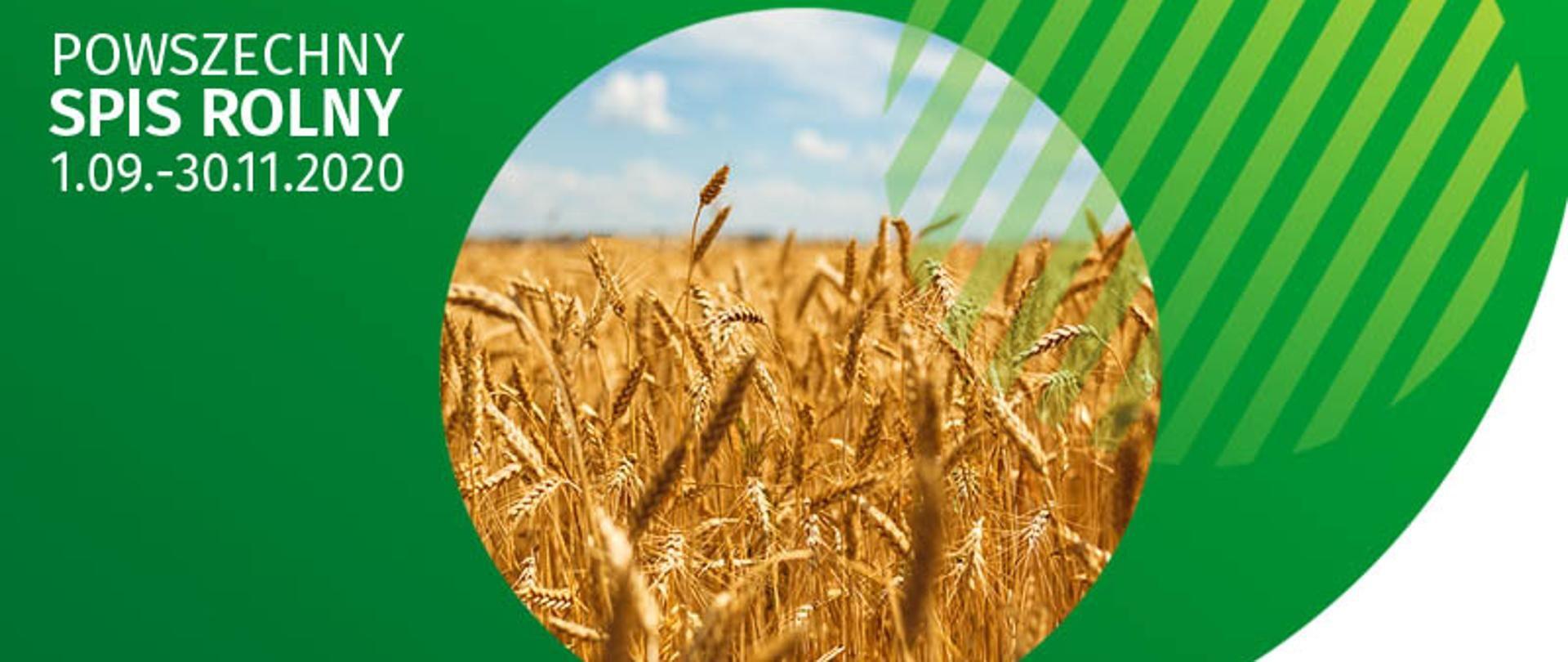 Banerz napisem Powszechny Spis Rolny 2020