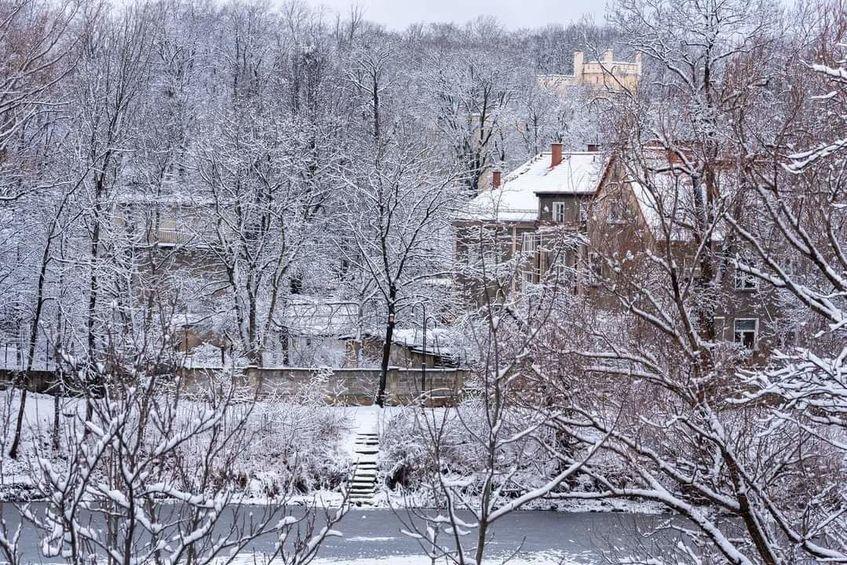 Zimowy widok stawu Warszawianka