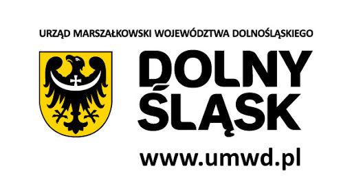 """Konsultacje społeczne projektu """"Dolnośląskiej Strategii Innowacji 2030"""""""