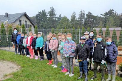 Akcja sadzenia drzew z Nadleśnictwem Świdnica