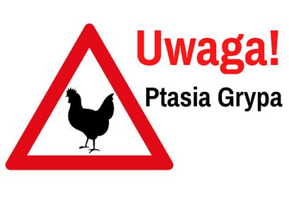 Komunikat Powiatowego Lekarza Weterynarii o wystąpieniu grypy ptaków