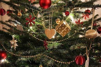 Konkurs na najpiękniejsze świąteczne drzewko