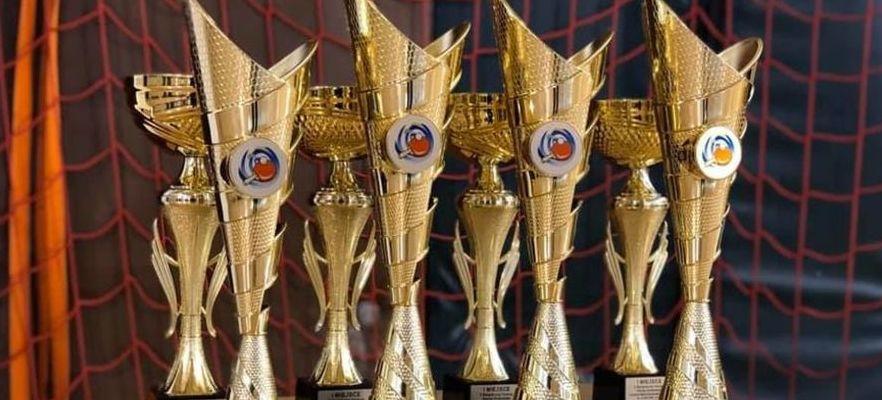 V Turniej Tenisa Stołowego o Puchar Wójta Gminy Wąwolnica 2019