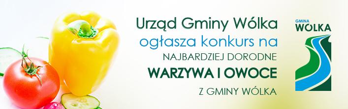 Urząd Gminy Wólka ogłasza konkurs na najbardziej dorodne warzywa i owoce z gminy Wólka