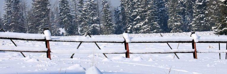 Zimowisko w dniach  9-18 luty 2019 r. w Zakopanym w Ośrodku pod Modrzewiami