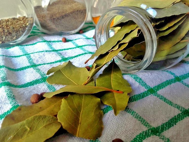 laurowe liście