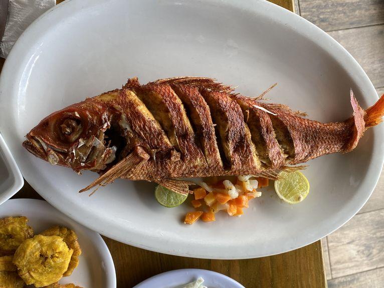 Można zjeść pyszną rybę.