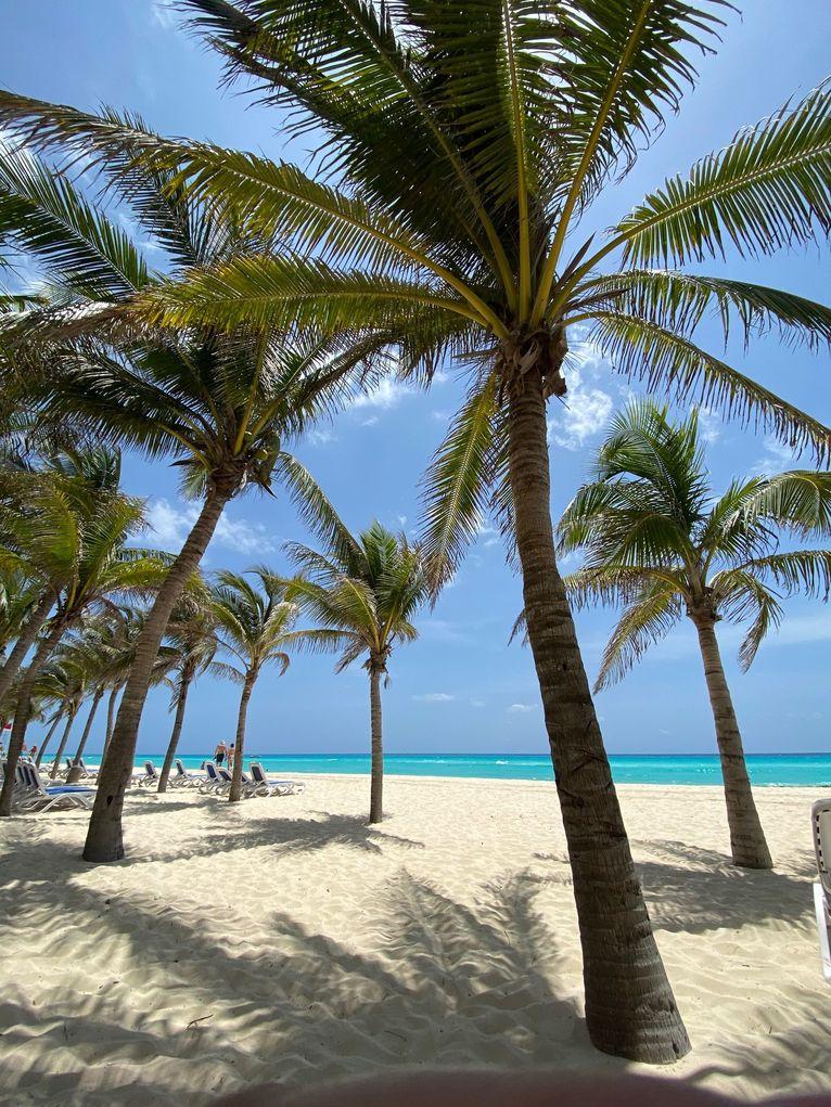 Piękna plaża Viva Wyndham Riviera Maya.