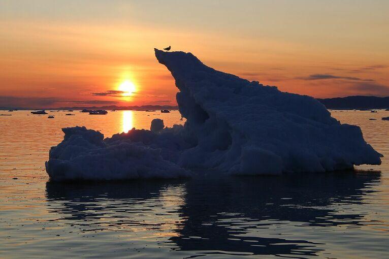 Arktyka/ zdjęcie pixabay