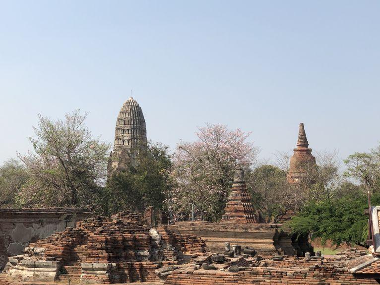 Angkor Thom bez turystów