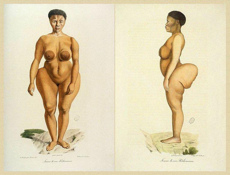 Sawtche, badana jako przedstawicielka rasy buszmenów, Historia Naturalna Ssaków, tom II, Cuvier, Werner, de Lasteyrie