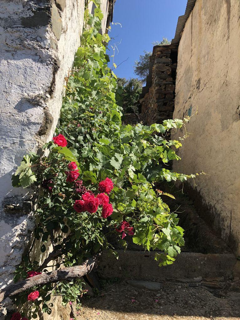 Opuszczone wioski w Las Hurdes
