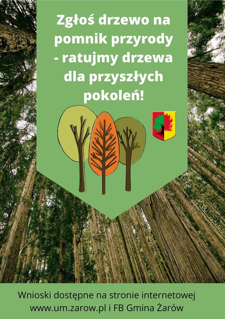 plakat Pomniki przyrody